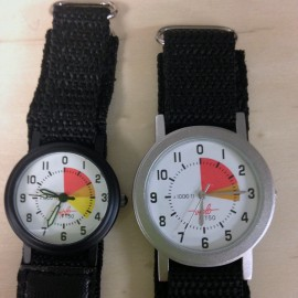 Viplo Watch
