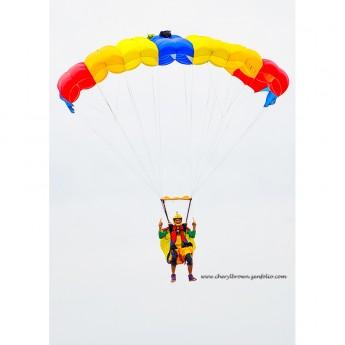 Used Tonysuit R-Bird II Wingsuit